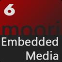 Youtube, Vimeo, Mp4 und WebM Videos in der Produkt Galerie abspielen