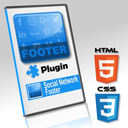 Social Network Footer icon