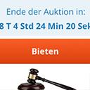 Auktionen - Artikel an den Höchstbietenden versteigern (eBay) icon